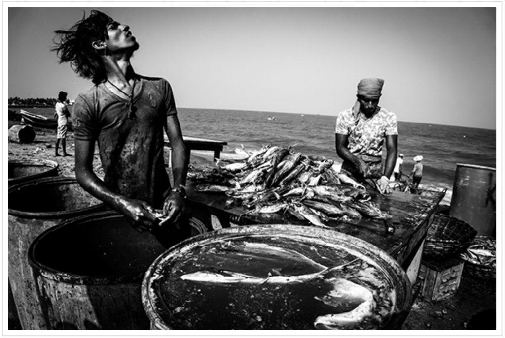 Laurent Blandin – Sri Lanka – La mer comme quotidien